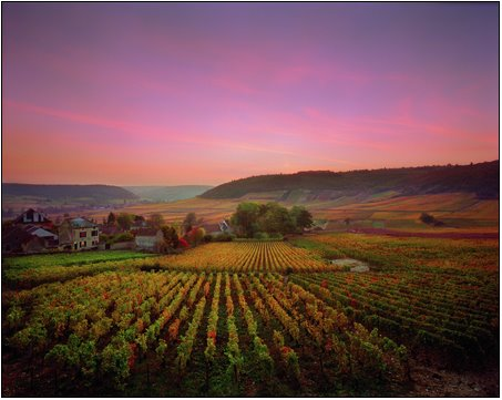 2_my_house_burgundy_france