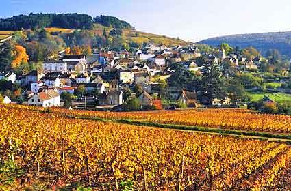 burgundy_france